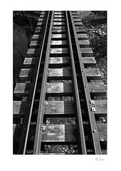 Tracks (radspix) Tags: nikon fe 3570mm zoomnikkor f3545 kentmere 100 pmk pyro