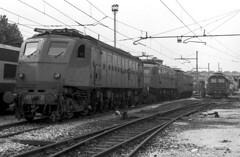 FS E 428.228 Milano Greco 05/08/1980 Foto Roberto Trionfini (stefano.trionfini) Tags: train treni bahn zug fs e428 milano italia italy