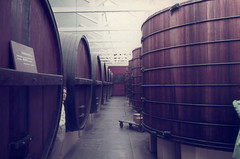 mystery winery tour (1) (mjcas) Tags: agfacolor foundphoto australia 1970s