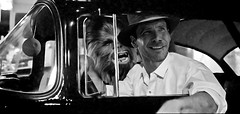 Indiana Jones Star Wars American Graffiti Mashup (Mike Rogers Pix) Tags: indianajones starwars chewie chewbacca americangrafitti harrisonford