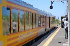 Resort train ASUNARO (しまむー) Tags: fujifilm xe2 ebc fujinon 55mm f18 velvia yokohama kabushima 横浜 蕪島 八戸 蕪島神社 菜の花