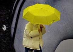 Under Cover (Edinburgh Photography) Tags: outdoors rain woman walking yellow umbrella photojournalism documentary street edinburgh nikon d7000