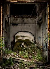 Skull in the Ruins (Greg Adams Photography) Tags: graffiti packardfactory ruins travel abandoned abandonedamerica forgotten detroit michigan urban decay workshop summer 2018 old light shadows hhsc2000 june