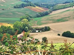 Landscape (simona300) Tags: landscape green nature natura sky light italy marche