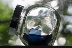 Thames foreshore glass (Spannarama) Tags: glass shards pieces jar window tree leaves backlit seaglass mudlarking thamesforeshore finds windowsill blueglass