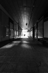Corridor 552 (JP Korpi-Vartiainen) Tags: finland july kaakkoissuomi kouvola kymenlaakso backlight city corridor heinäkuu kaupunki kesä kesäinen käytävä landscape light maisema ranta reverse shore summer summery urbaani urban valo vastavalo