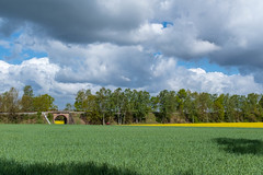 Raps - Wolken - Kurz vor dem Regen (Kerstin_Butenbremer) Tags: gelb farbe rapsfeld tunnel radfahrer rot bahnlinie landschaft umwelt ultrataglte20deen wolkenbildung