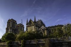 Notre-Dame de Paris (Askjell) Tags: archdioceseofparis frenchgothicarchitecture notredamedeparis