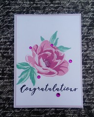 Altenew congratulations card (Paper art and other stories) Tags: congratulations cardmaking handmade altenew handmadecard greetingcard flowers congratulationscard