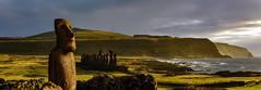 Moai at dawn, Easter Island (David D Moore) Tags: easterisland rapanui isladepascua moai ahutongariki ranoraraku anakena ahuakivi theseven birdmancult birdman birdmen orongo ahutahai koteriku tahai vaiure ranokau polynesia chile