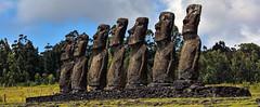 Moai at Ahu Akivi (informally the Seven), Easter Island (David D Moore) Tags: easterisland rapanui isladepascua moai ahutongariki ranoraraku anakena ahuakivi theseven birdmancult birdman birdmen orongo ahutahai koteriku tahai vaiure ranokau polynesia chile