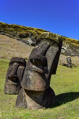 Moai on Easter Island (Rapa Nui: Rapa Nui, Spanish: Isla de Pascua) (David D Moore) Tags: easterisland rapanui isladepascua moai ahutongariki ranoraraku anakena ahuakivi theseven birdmancult birdman birdmen orongo ahutahai koteriku tahai vaiure ranokau polynesia chile