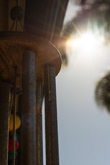 Sunshine (.Stephen..Brennan.) Tags: da35macro pentax pentaxk3 silhouette sun perth westernaustralia australia