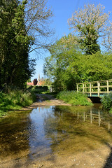 Little England (Drew Scott :))) Tags: outdoor england village stream bridge ford water lane track path tree hedge church building ripple reflection plant flower forgetmenot spring sky sunlight shadow nature nikon d3200 littlebytham lincolnshire