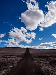 Ranch road (HarQ Photography) Tags: panasonic lumix g9pro leicavarioelmarit1260mmf2840asph landscape road ranch tasmania australia sky blue