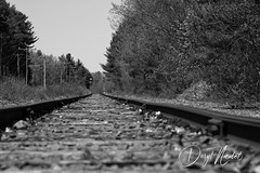 Nashua Train tracks (daryl nicolet) Tags: train blackandwhite black white tracks rails landscape scenic daryl nicolet dnicpix canon 5dm3 sigma