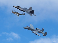 171105_029_JaxAS_heritage (AgentADQ) Tags: jacksonville nas florida 2017 air show airshow a10 ii warthog us force jet fighter plane airplane military aviation thunderbolt lockheed f22 raptor north american p51d mustang