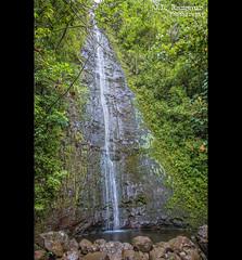 Manoa Falls - Koʻolau Mountains - Manoa Valley - Oahu, Hawaii (J.L. Ramsaur Photography) Tags: jlrphotography nikond7200 nikon d7200 photography photo oahuhi 25thanniversary honolulucounty hawaii 2019 engineerswithcameras islandsofhawaii photographyforgod hawaiianislands islandphotography screamofthephotographer ibeauty jlramsaurphotography photograph pic oahu tennesseephotographer oahuhawaii 25years anniversarytrip bucketlisttrip thegatheringplace 3rdlargesthawaiianisland 20thlargestislandintheunitedstates therainbowstate manoafallstrail manoafalls koolaumountains koolaumountainrange manoavalley rainforest hawaiianwaterfall waterfallsofhawaii nightmarchers honolulumakautrailsystem jurassicpark catchingfire hawaiifive0 lost tropicalrainforest nationalnaturallandmark rainbowvalley nature outdoors god'sartwork nature'spaintbrush god'screation waterfall