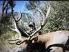 Colorado Elk Hunt and Mule Deer Hunt - Meeker 20