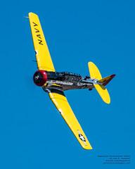 A SNJ MAKING A NICE BANK IN BLUE SKIES (AvgeekJoe) Tags: classof55 d5300 dslr hfm heritageflightmuseum kbvs n6413d navalaviation nikon nikond5300 northamericansnj northamericansnj4 northamericansnj4texan northamericantexan snj snj4texan skagit skagitcounty skagitregional skagitregionalairport skagitonia t6texan trainer warbirds aircraft airplane aviation plane radialenginedairplane soundofround warbird