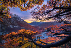 Prismatic Color (Maddog Murph) Tags: landscape photography argentina patagonia el chalten river valley fall color autumn prismatic colorful vivid tree trees foliage forest sunrise glow sunstar fine art
