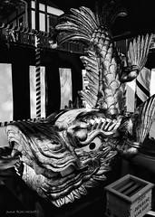 Kinshachi (patoche21) Tags: art asie asiedelest culturel japon monument nagoya patrimoine voyages architecture artclassique dauphin historique oeuvresartistiques poissons sitetouristique tourisme patrickbouchenard nb bw blackandwhite japan asia eastasia heritage dolfin fish artistic cultural sculpture carving statue classical gold or kinshachi shachihoko chiwen dragon