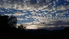 izaskunetikan (eitb.eus) Tags: eitbcom 41495 g149928 tiemponaturaleza tiempon2019 primavera gipuzkoa tolosa pilargaztañaga