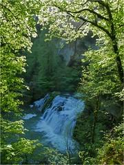 Vue plongeante sur la source du Lison (Guy Decreuse 25) Tags: cascade verneau sarrazine billard creux spéléo karst jura doubs anne sainte sous nans lison source