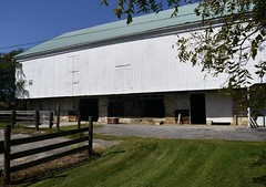 Cattle to cats  .  .  . (ericrstoner) Tags: pennsylvaniabankbarn bankbarn barn pennsylvania lancastercounty lancaster manheimtownship barnyard cattle steers cats stable
