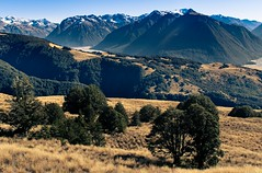 the beautiful Arthur's Pass National Park. NZ (ndoake) Tags: