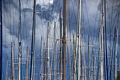 A sea of masts. (Ian Ramsay Photographics) Tags: noumea newcaledonia sea masts ocean deep