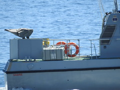 Royal Navy Scimitar Class Patrol Boat HMS Sabre P285 off Catalan Bay, Gibraltar (56) (andrew.dace) Tags: royal navy scimitar class hms sabre p285