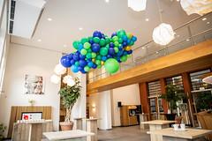 driessen ballonwolk, pauw thema