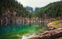 Kaindy Lake (free3yourmind) Tags: kaindy lake kazakhstan kazakstan long exposure colorful green turquoise water standing trees forest nature mist fog clouds cloudy view woods idylic scenic scenery