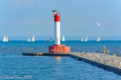 Oakville Pier & Light Beacon (SewerDoc (4 million views)) Tags: oakville ontario lighbeacon beacon pier lighthouse lakeontario birds sailboats race harbour harbor greatlakes