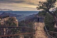 North Rim Grand Canyon - Icons of the Southwest USA (The Shared Experience) Tags: iconic southwest usa 2017 sonydslr sonyalpha travel desert northrimgrandcanyon gcnp