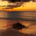 201904 Turks and Caicos-06599.jpg