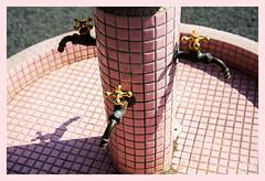 2ème jour / 2nd day - Joli petit bassin / Nice little pond - Château Nijo / Nijo castle - Kyoto (christian_lemale) Tags: kyoto japon japan château castle nijo nijojo 京都 二条城 日本 nikon d7100