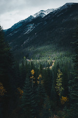 Mountain Railway (Top KM) Tags: ifttt 500px canada alberta british columbia bc banff mountain mountains forest train trees nature landscape outdoors rockies rocky railway no person nobody travel explore exploration exploring range peak national park moody canadian