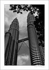 The Petronas towers (G. Postlethwaite esq.) Tags: bw borneo fujx100t malaysia petronastowers singapore southeastasia unlimitedphotos blackandwhite clouds monochrome photoborder sky tree