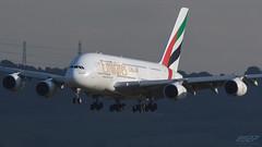 A6-EDO A380-861 Emirates (kw2p) Tags: a380861 a6edo airbus aircraft airlineoperator airport aviation egpf emirates airline aeroplane airplane flying flight kw2p scotland canon canon7dmkii 7dmkii gaaec glasgowairport egpfgla