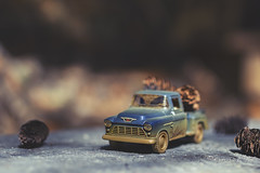 it's all in a day's work (rockinmonique) Tags: toy mini truck chevy chevrolet pinecones blue brown bokeh back40 tinycar moniquewphotography canon canont6s tamron tamron45mm copyright2019moniquewphotography