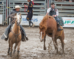 High River Rodeo 2018 (tallhuskymike) Tags: highriver rodeo event horse horses cowboy alberta action muddy mud prorodeo 2018 outdoors guyweadickdays