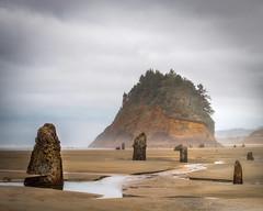 Neskowin Ghost Forest Best copy (Bobby Vilas) Tags: oregon coast stumps trees ocean sea moody