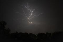 Lightning tree (jeremyhughes) Tags: singapore lightning thunder thunderstorm weather rain electrical storm electricalstorm night nighttime tree nikon d700 nikkor 28mmf35ai 28mm wideangle lightningtrigger explore