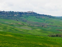 Tuscan countryside (ekelly80) Tags: italy tuscany april2019 spring countryside valdorcia hills rolling green grass yellow flowers view