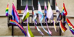 2019.05.14 Stonewall National Monument, New York, NY USA 02615