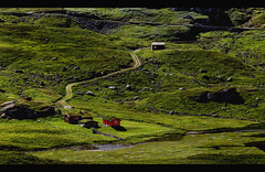 Norwegian landscape beauty (Fr@ηk ) Tags: img9468pmnorway mrtungsten62 frnk norge norway travel beauty nature architecture region blog baklia hordaland canon 6d 24105isl
