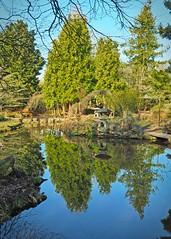 Newstead Abbey Gardens (janedoe.notts) Tags: water lake reflection reflections tree trees nottingham nottinghamshire gardens newsteadabbey england unitedkingdom