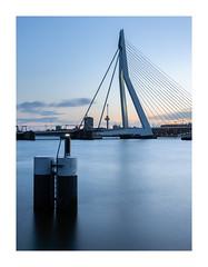 Erasmusbrug Rotterdam (Rob Schop) Tags: erasmusbrug rotterdam bluehour nd64 hoyaprofilters longexposure sonya6000 sigma30mm14 prime composition blue smooth
